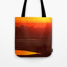 Elephants evening - Africa wildlife Tote Bag