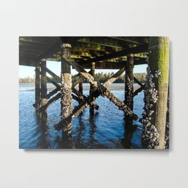 Under the Dock Metal Print