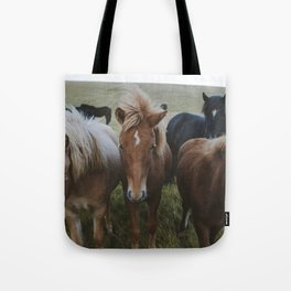 Horses on the road to Höfn Tote Bag