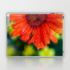 Pow! Laptop & iPad Skin