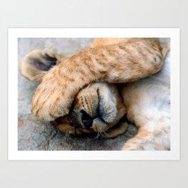 The Lion Sleeps Art Print