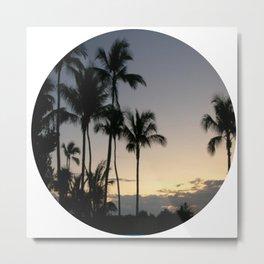 Florida Palm Trees Metal Print