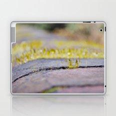 Nature in Miniature Laptop & iPad Skin
