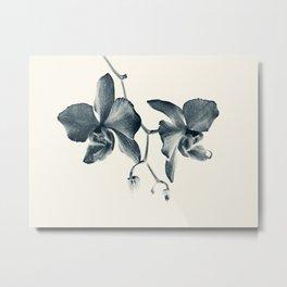 Cyan Orchid #1 Metal Print