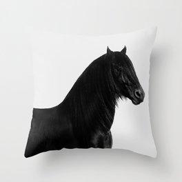 Black beauty Friesian stallion Throw Pillow