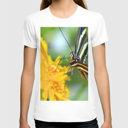 The Zebra Longwing T-shirt
