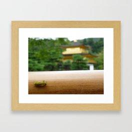 The Kinkaku-ji tiny caterpillar Framed Art Print