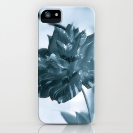"""""""Rose Theatre"""" by ICA PAVON iPhone Case"""