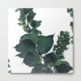 BLUE-GREEN Metal Print