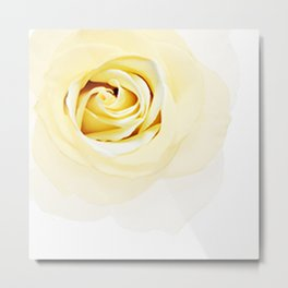 Whtie Rose Metal Print