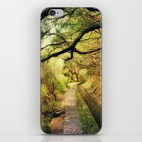 wonderland iPhone & iPod Skins featuring wonderLand by Dirk Wuestenhagen Imagery