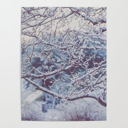 A Winter's Morning II Poster