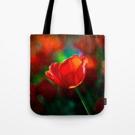 Red tulip - Mystery of blooming Tote Bag