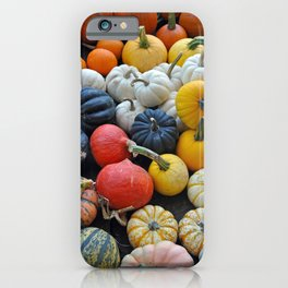 Colorful gourds and pumpkins iPhone Case