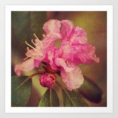 Rhapsody Blooms Art Print
