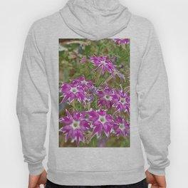 little flower - flor do campo Hoody