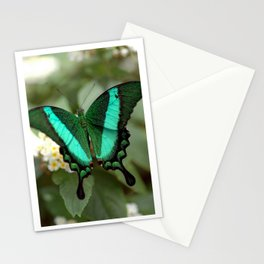 New Life Stationery Cards