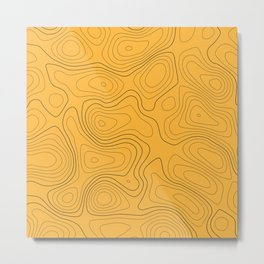 Topographic Map 01A Metal Print