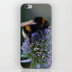 Buzz fine art photography iPhone & iPod Skin