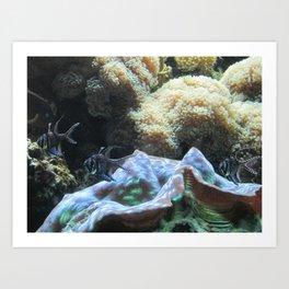 Black & White Fishes Art Print