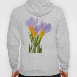 Group of blue crocuses Hoody