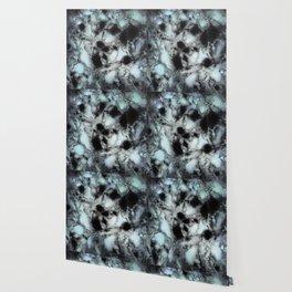 Searching for animal tracks Wallpaper