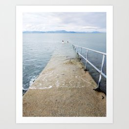 Irish Swim Art Print