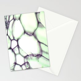 CAPSULE  Stationery Cards