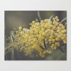 Quite and soothing Canvas Print