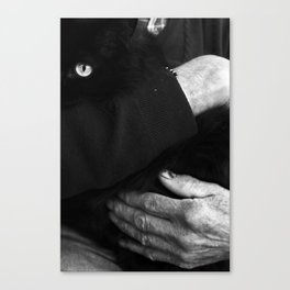 CARESS AND GO TO BED. Canvas Print