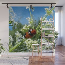 funny ladybug luck at love playing in spring Wall Mural