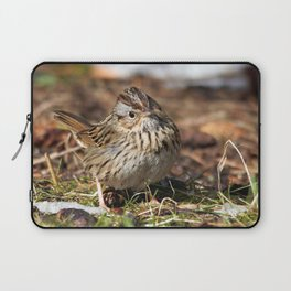 Staredown with a Lincoln's Sparrow Laptop Sleeve