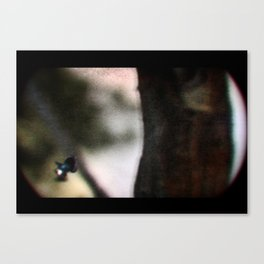 THE OBVIOUS CHILD PRINT #3 Canvas Print