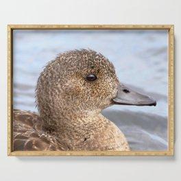 Watercolor Bird, Gadwall Duck 08, Lake Myvatn, Iceland Serving Tray