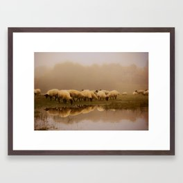 Foggy Sheep Framed Art Print