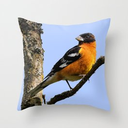 Profile of a Male Black-Headed Grosbeak Throw Pillow