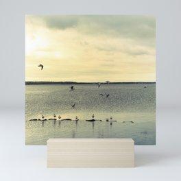 Seagulls Mini Art Print