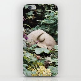 Resting Intuition iPhone Skin