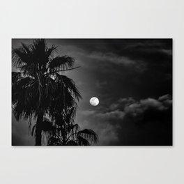 Palm Glow Canvas Print