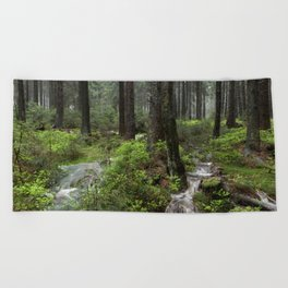 Mountains, forest, water. Beach Towel