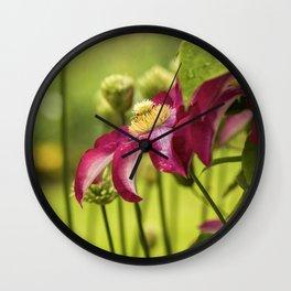 Iris Garden  5-10-18  Wall Clock