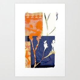 botanical collage 01 Art Print