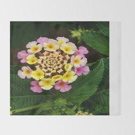 Fresh Lantana Flower Against Leaf Background Throw Blanket
