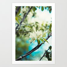 tropical flower. Art Print