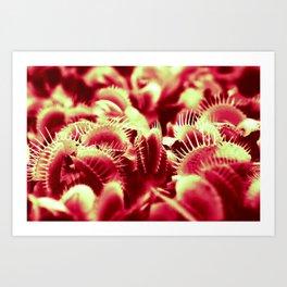 Carnivorous beauty Art Print
