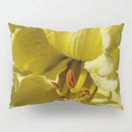 Yellow blooms Pillow Sham