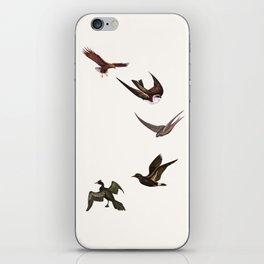 Holding Pattern iPhone Skin