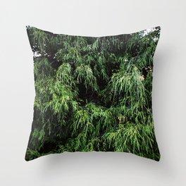Pinefalls Throw Pillow