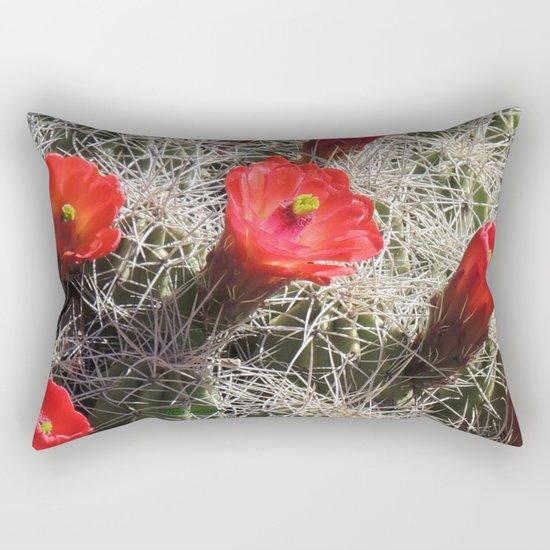 A Hedgehog Cactus Looks Sunward Rectangular Pillow