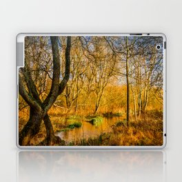 Kintbury Marshes Laptop & iPad Skin